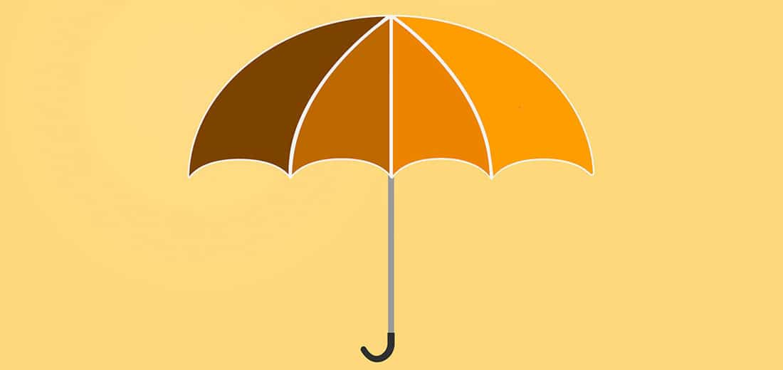 Umbrella System Integrator – Why worry? It's not even raining.